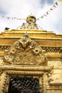 temple KTM