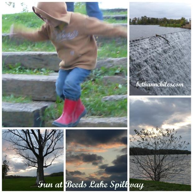 Beeds Lake Collage