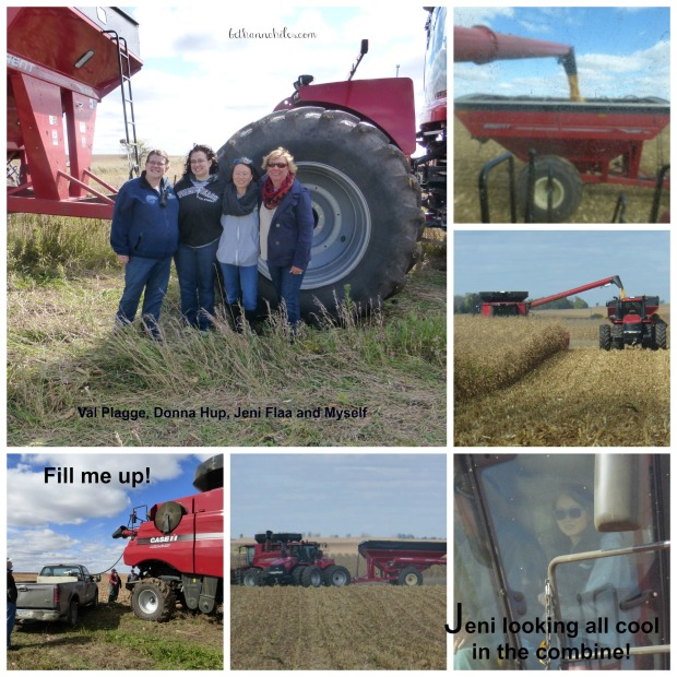 combine2 Collage