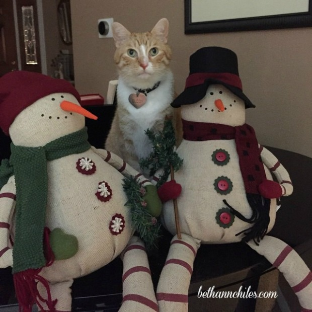 1Buddy and Snowmen